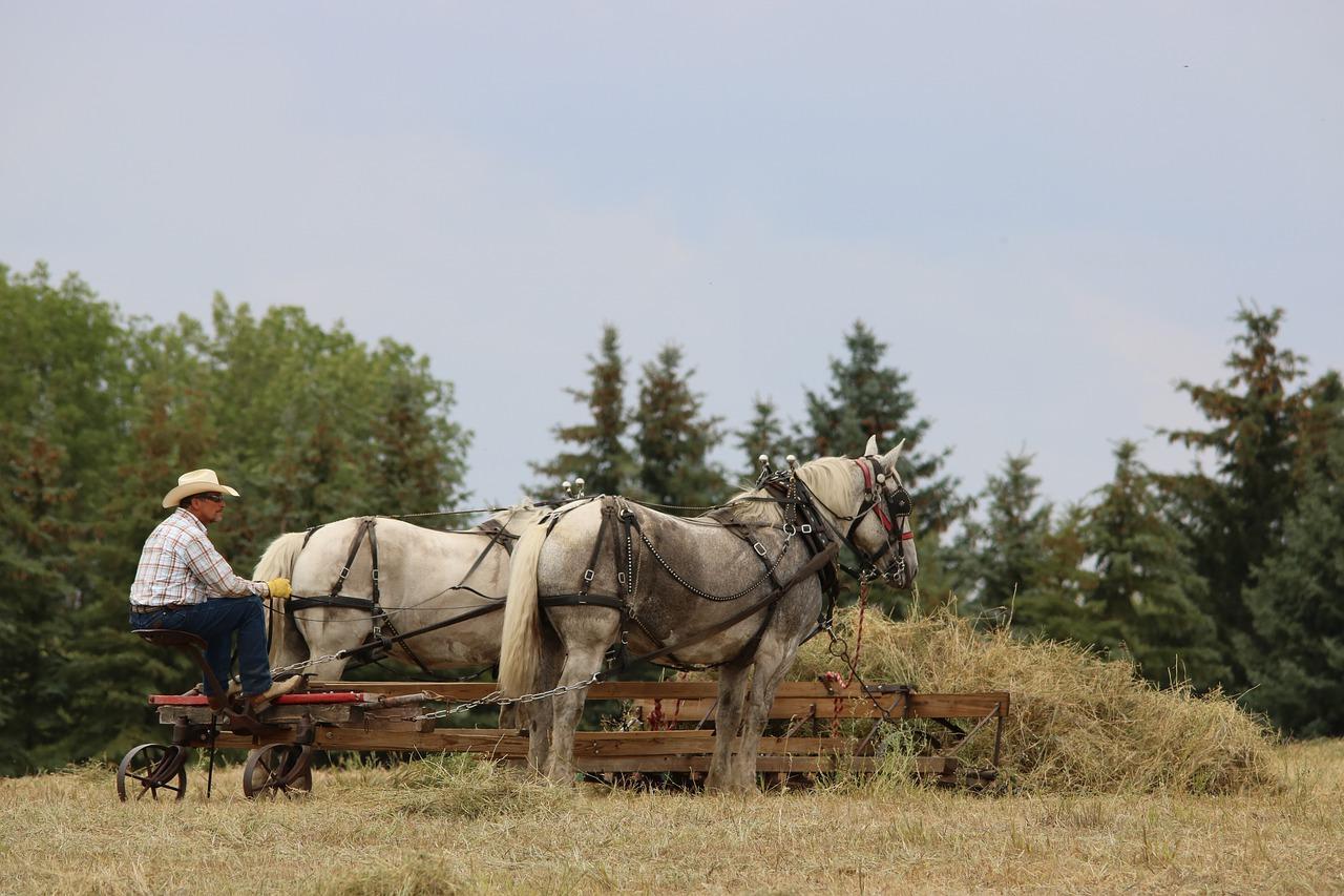 Qual a Jornada do Trabalhador Rural?